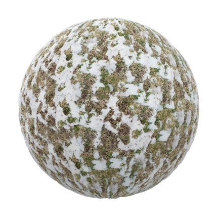 grass free pbr texture